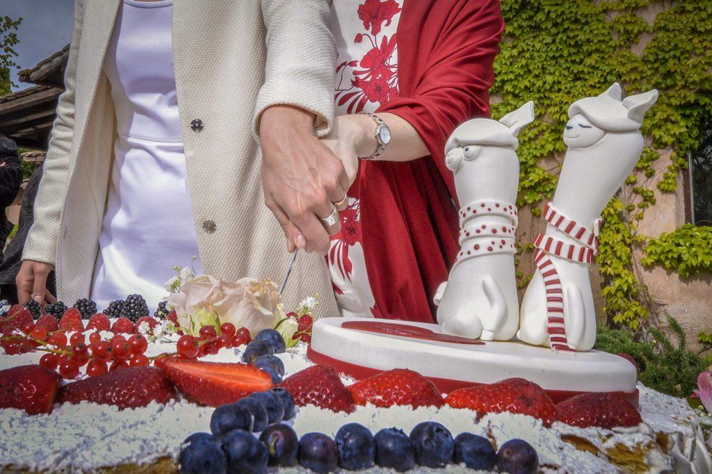 Il taglio torta, momento simbolico dell'inizio di una vita insieme